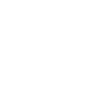 Profesional Seal